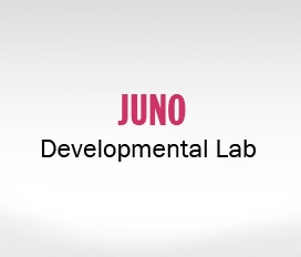 Juno Developmental Lab