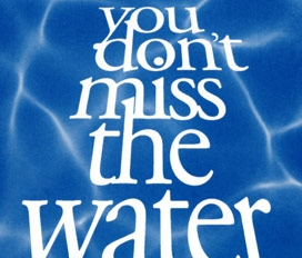 You Don't Miss The Water